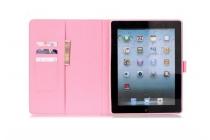 """Фирменный эксклюзивный необычный чехол-футляр для iPad 2/3/4 """"тематика Кот"""""""